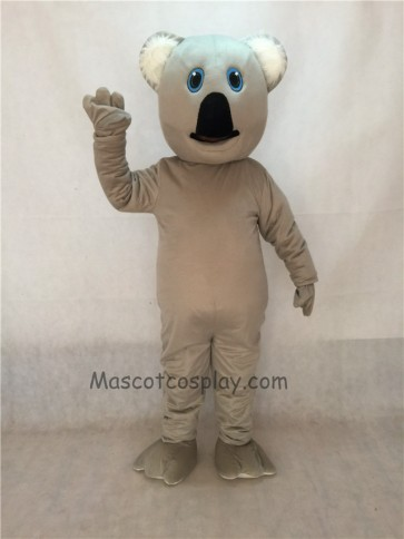New Koala Bear Mascot Costume