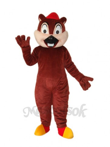 Squirrel Bear Mascot Adult Costume
