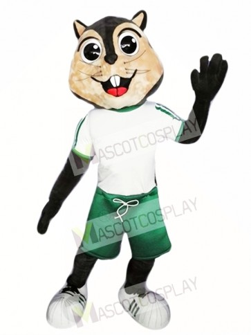 High Quality Squirrel Mascot Costume