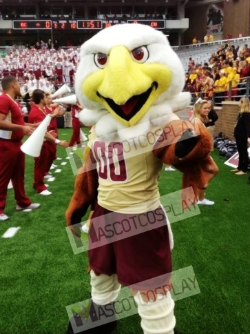College Eagles Mascot Costume