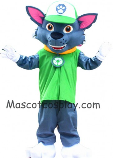 Paw Patrol Recycling Ecology Pup Rocky Mascot Character Costume Paw Patrol Eco Pup