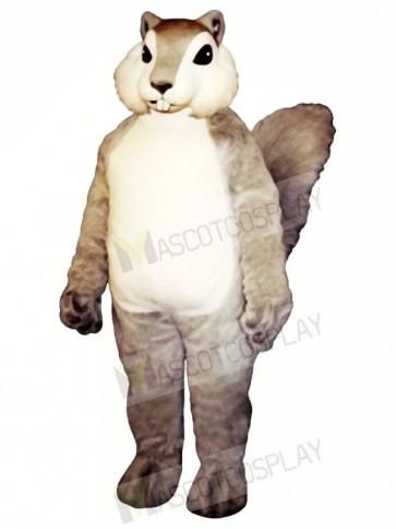 Grey Squirrel Mascot Costumes