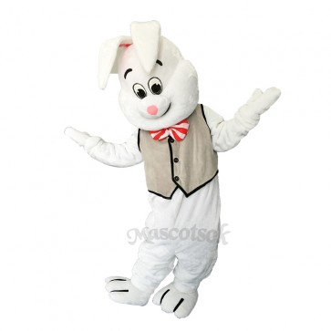 Lovely Easter March Hare Bunny Rabbit Mascot Costume