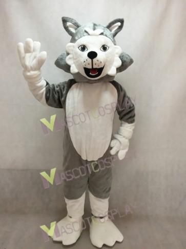 Adorable Wolf Dog Mascot Costume
