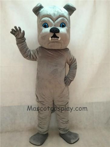 Vivid Grey Bulldog Dog Mascot Costume