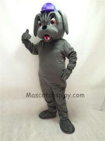 Cute Grey Bulldog with Collar & Purple Hat Mascot Costume