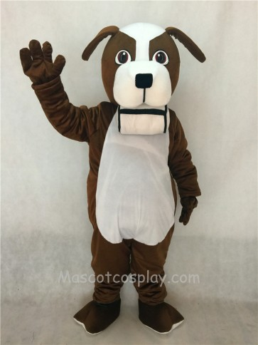 Brown and White St. Bernard Dog with Barrel Mascot Costume