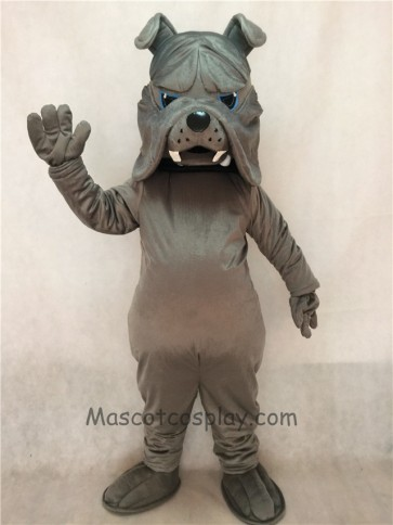 Gray Bulldog Dog Mascot Costume