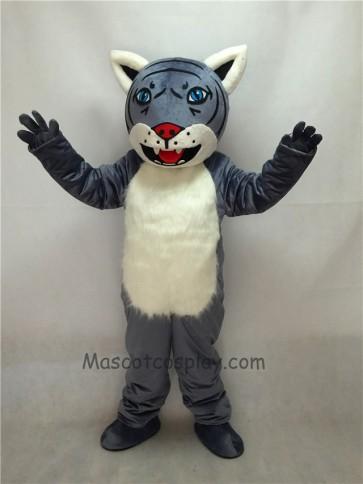 Cute New Gray Wildcat Cub Mascot Costume