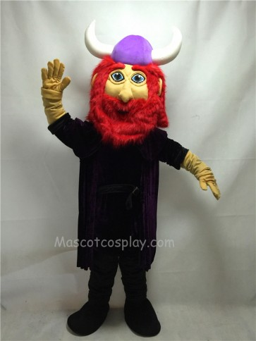 Cute Friendly Viking Mascot Costume
