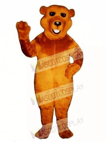 New Barry Bear Mascot Costume