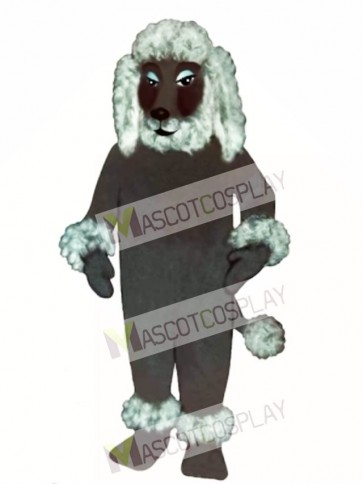 Cute Poodle Dog Mascot Costume