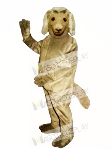 Cute Afghan Dog Mascot Costume