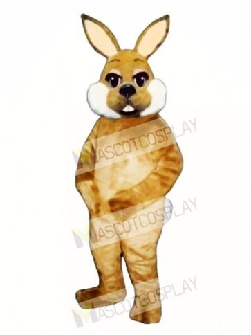 Cute Easter Brown Bunny Rabbit Mascot Costume