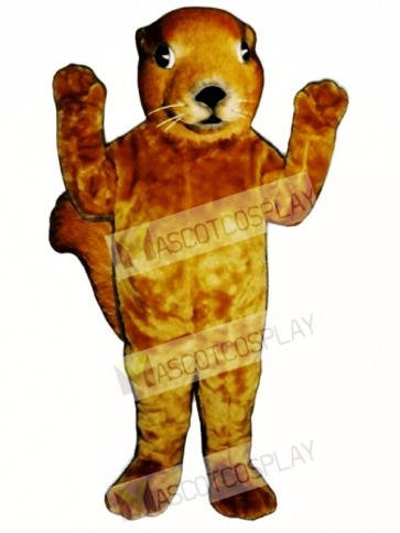 Realistic Squirrel Mascot Costume