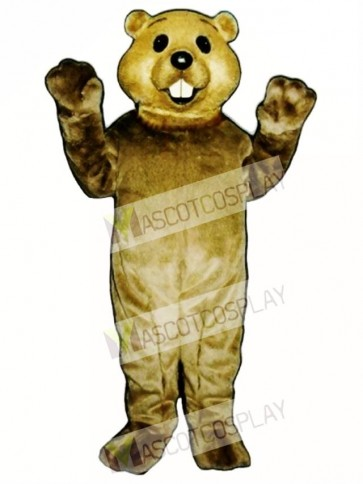 Cute Groundhog Mascot Costume