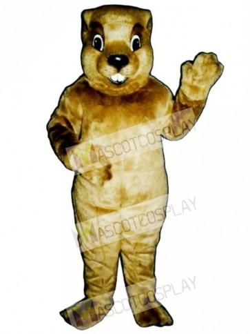 Groundhog Mascot Costume