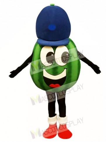 Madcap Watermelon Mascot Costume