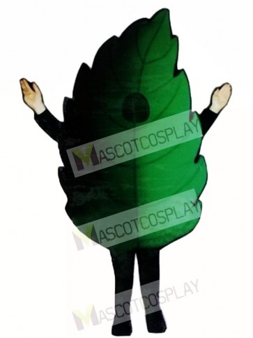 Leaf Mascot Costume