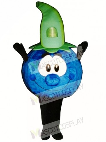 Bobby Blueberry Mascot Costume