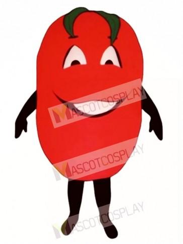Big Tomato Mascot Costume