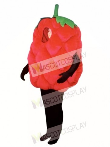 Fresh Raspberry Mascot Costume