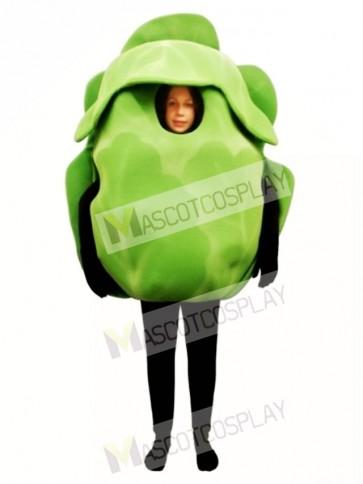Iceberg Lettuce Mascot Costume