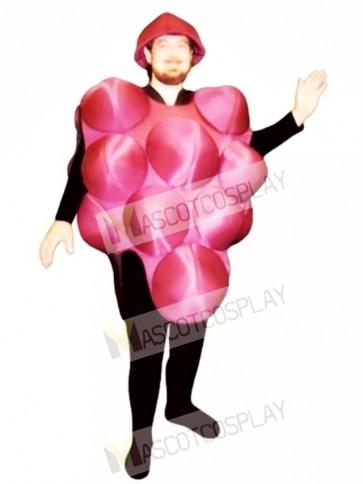 Grapes Mascot Costume