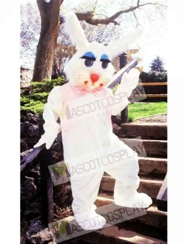 Peter Rabbit Bunny Mascot Costume