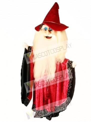 Merlin Wizard Mascot Costume
