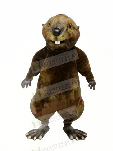 High Quality Otter  Mascot Costumes