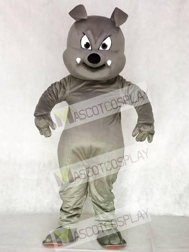 & Cute Gray Buster Bulldog Mascot Costume