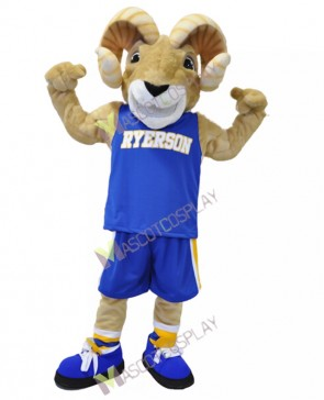 Sport Team Ram Ryerson Mascot Costumes Cheerleaders Animal Costume
