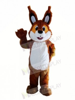 Brown Lightweight Squirrel Mascot Costumes