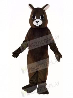 Brown Squirrel Mascot Costumes