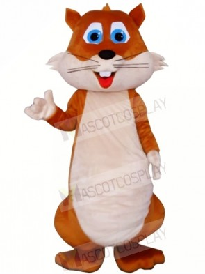 High Quality Chubby Squirrel Mascot Costumes
