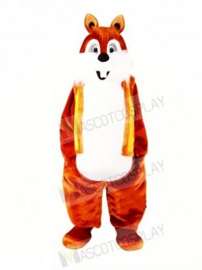 Super Cute Lightweight Chipmunk Mascot Costumes