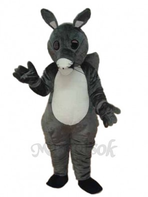 Long Tail Squirrel Mascot Adult Costume