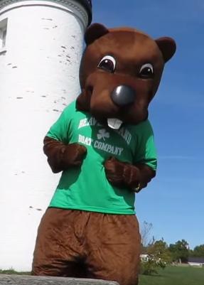 Barney Beaver Mascot Costumes