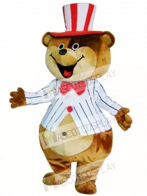 Huge Teddy Mascot Costumes Brown Bear Costume