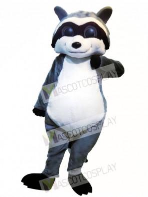 Cute Raccoon Animal Mascot Costume