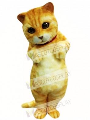 Cute Animal Cat Mascot Costume