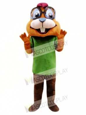 Chipmunk Mascot Costume Custom Fancy Costume