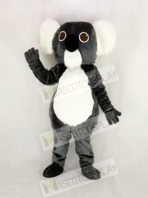 Cute Gray Koala Mascot Costume Cartoon