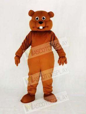 Cute Brown Nutty Squirrel Mascot Costume College