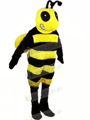 Black and Yellow Bee Mascot Costumes Animal