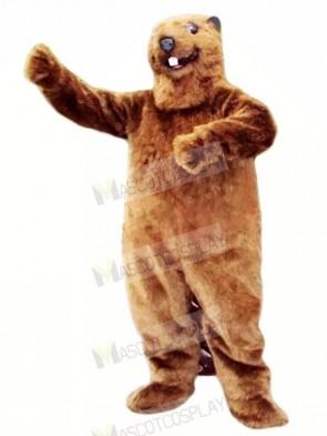 Best Quality Beaver Mascot Costumes Animal