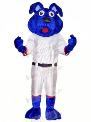 Blue Dog with White Suit Mascot Costumes Animal