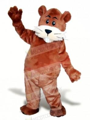 Cute Brown Beaver Mascot Costumes Animal