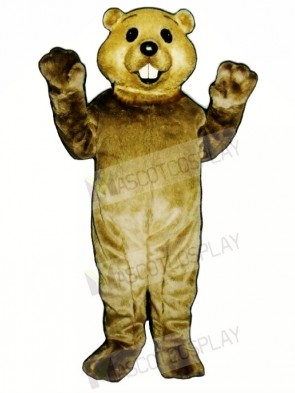 Cute Groundhog Mascot Costumes